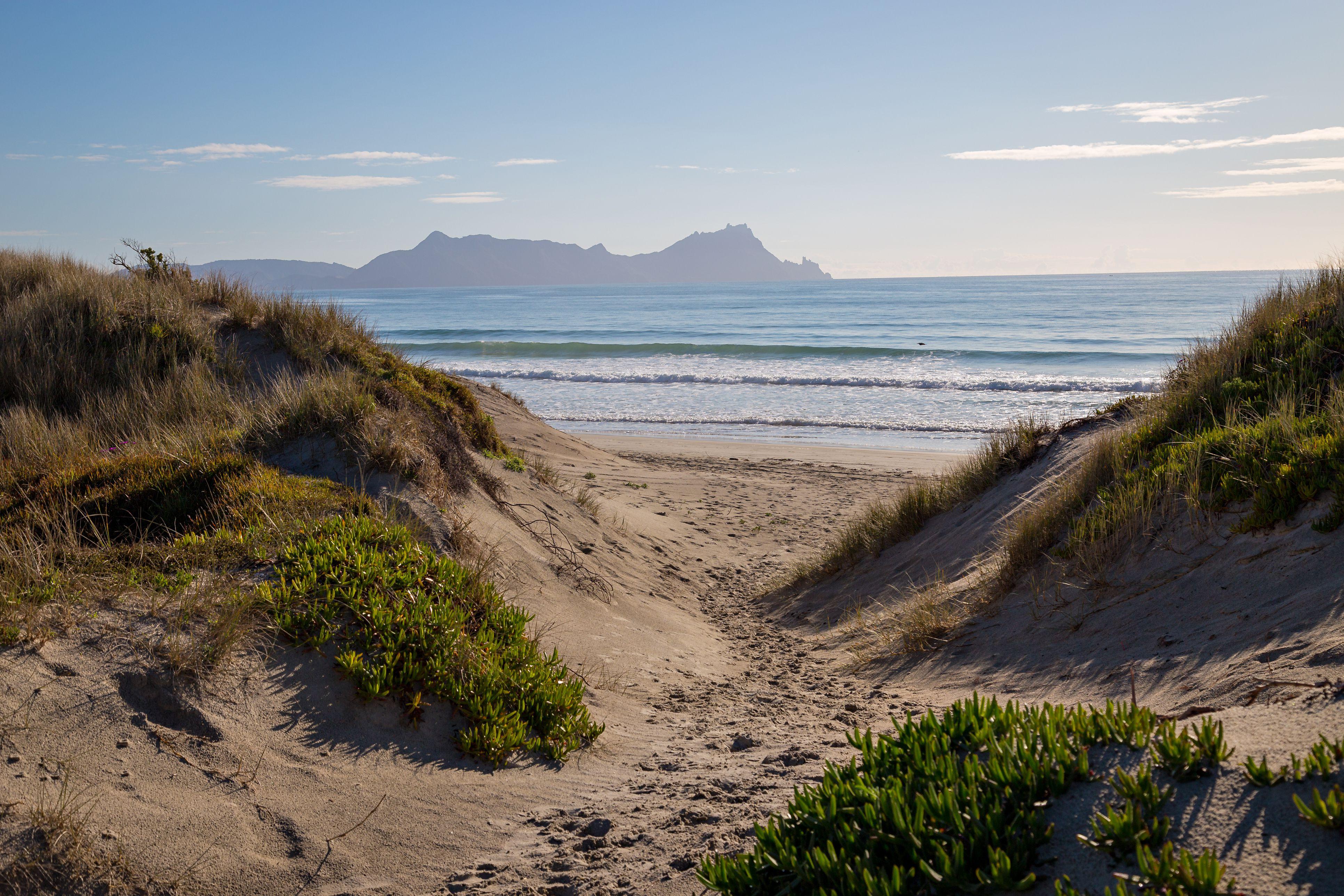 Uretiti Beach in New Zealand