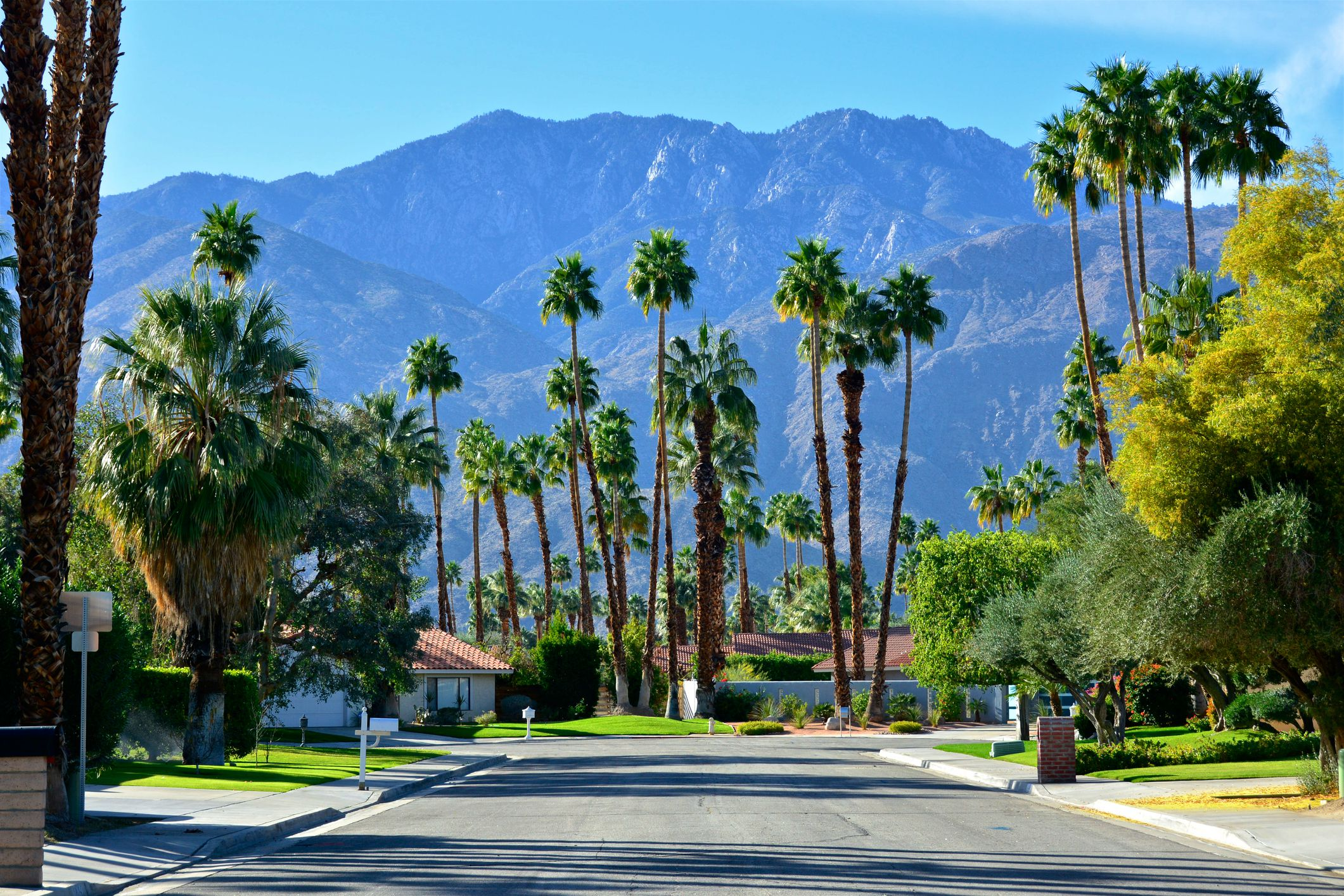 Mid-century modern homes, street scene in Palm Springs, Southern California, USA