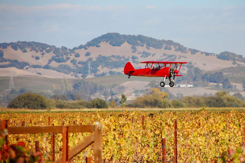 Biplane Ride in Sonoma