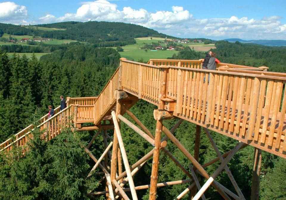Treetop Tour in Kopfing, Austria, with Adventures by Disney