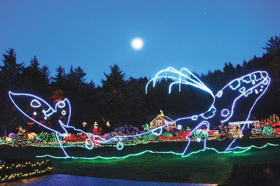 Coos Bay, Oregon Christmas lights