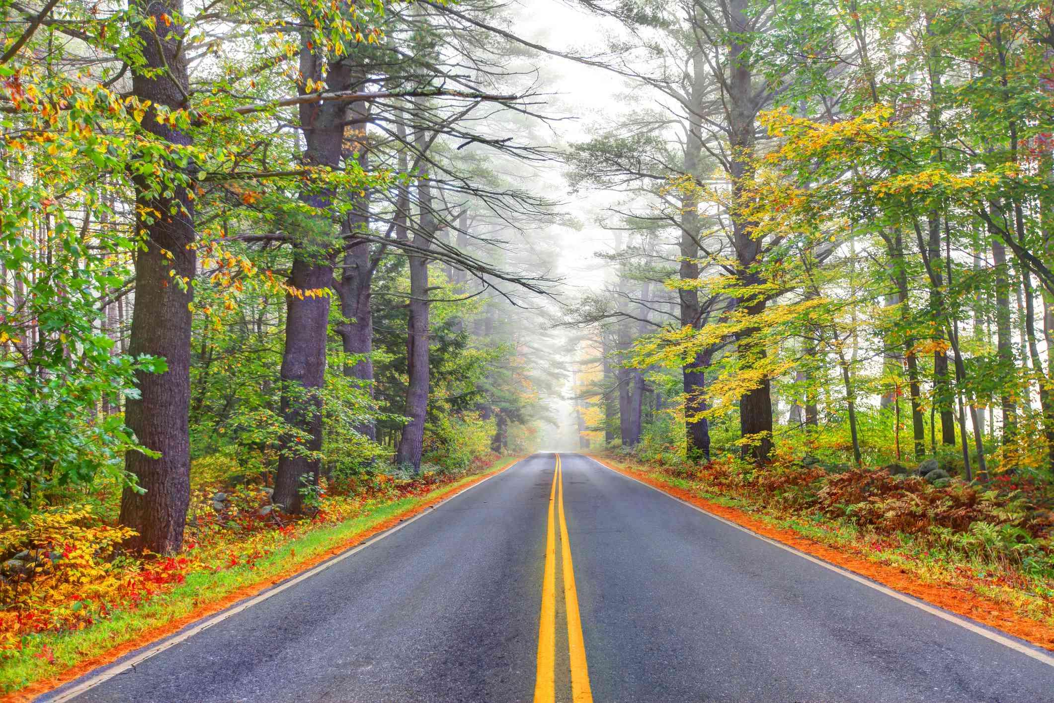 Sunapee Region NH Fall Road Trip