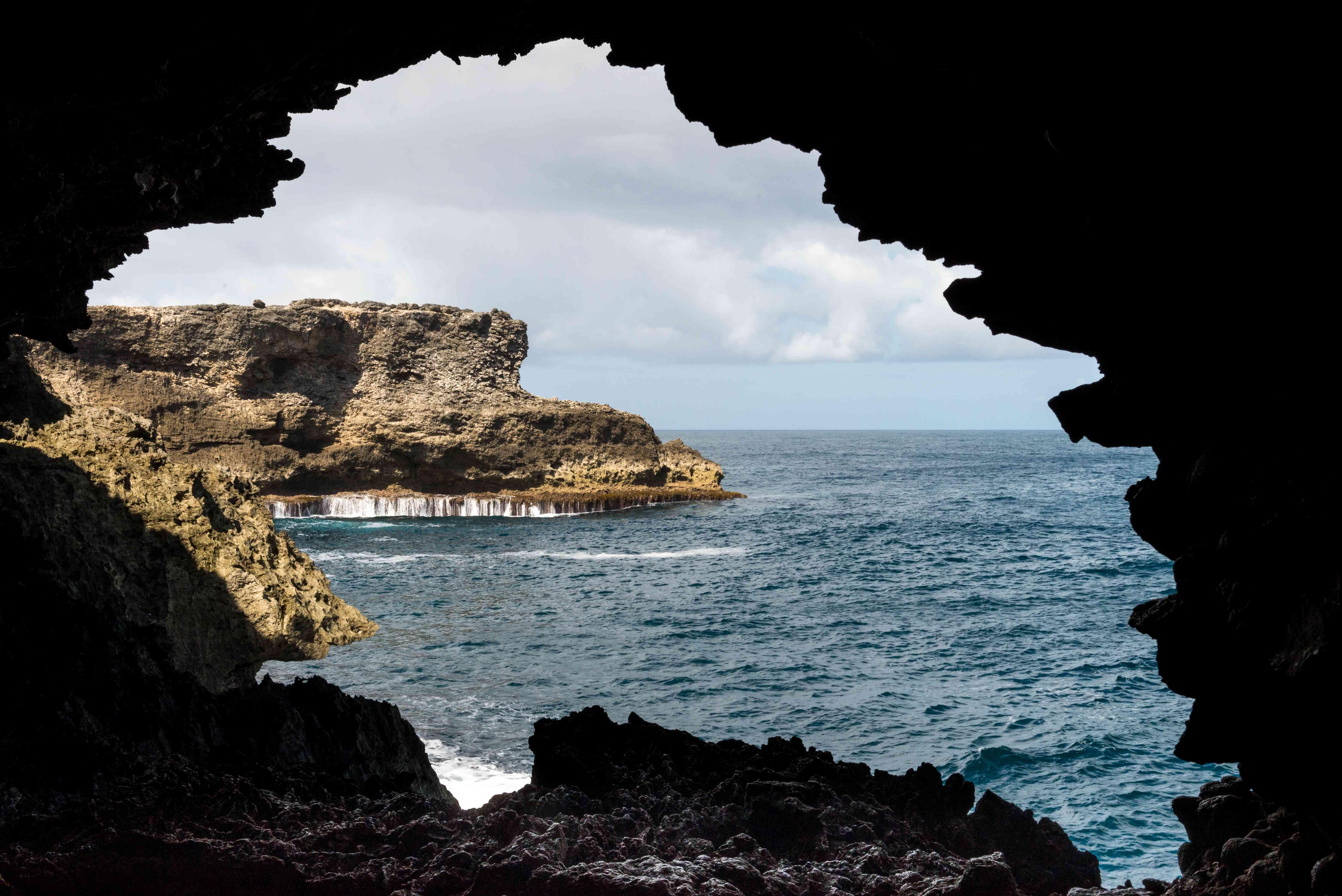 Silueta de Animal Flower Cave, Barbados