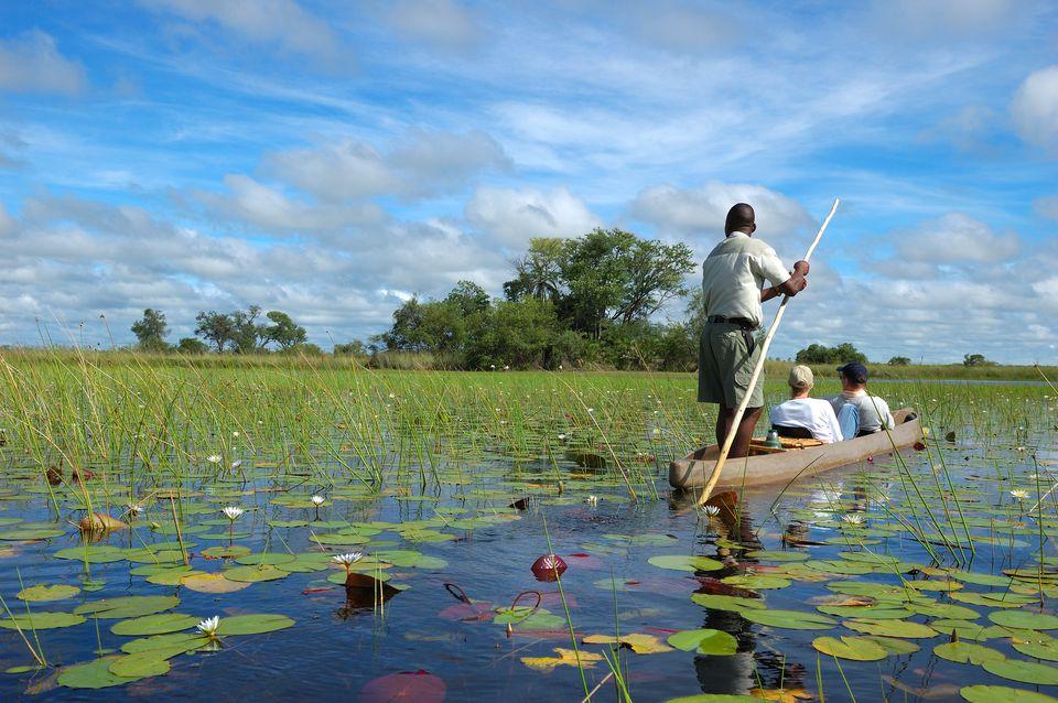 Mokoro rides through the Okavango Delta, Botswana