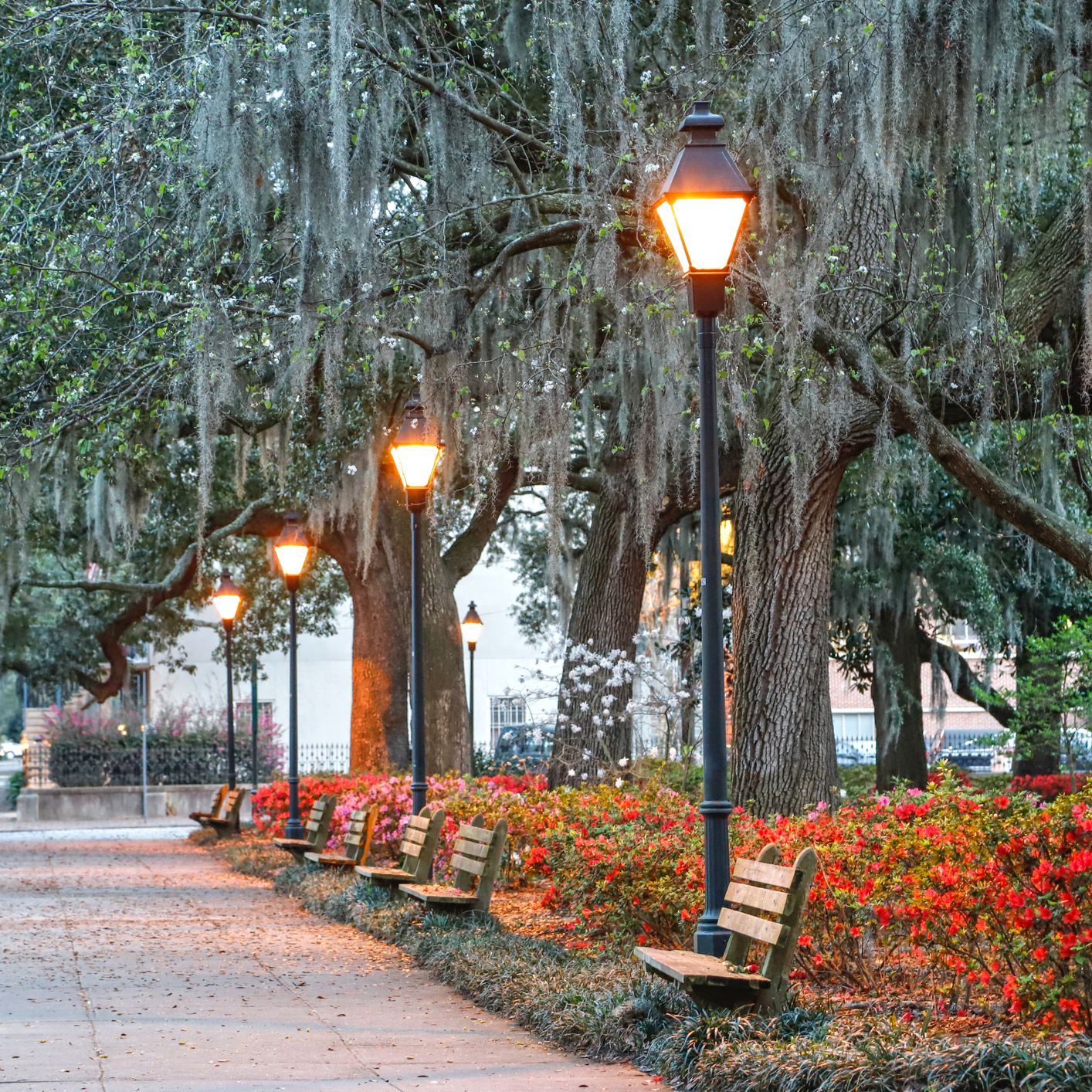 48 Hours in Savannah: The Ultimate Itinerary