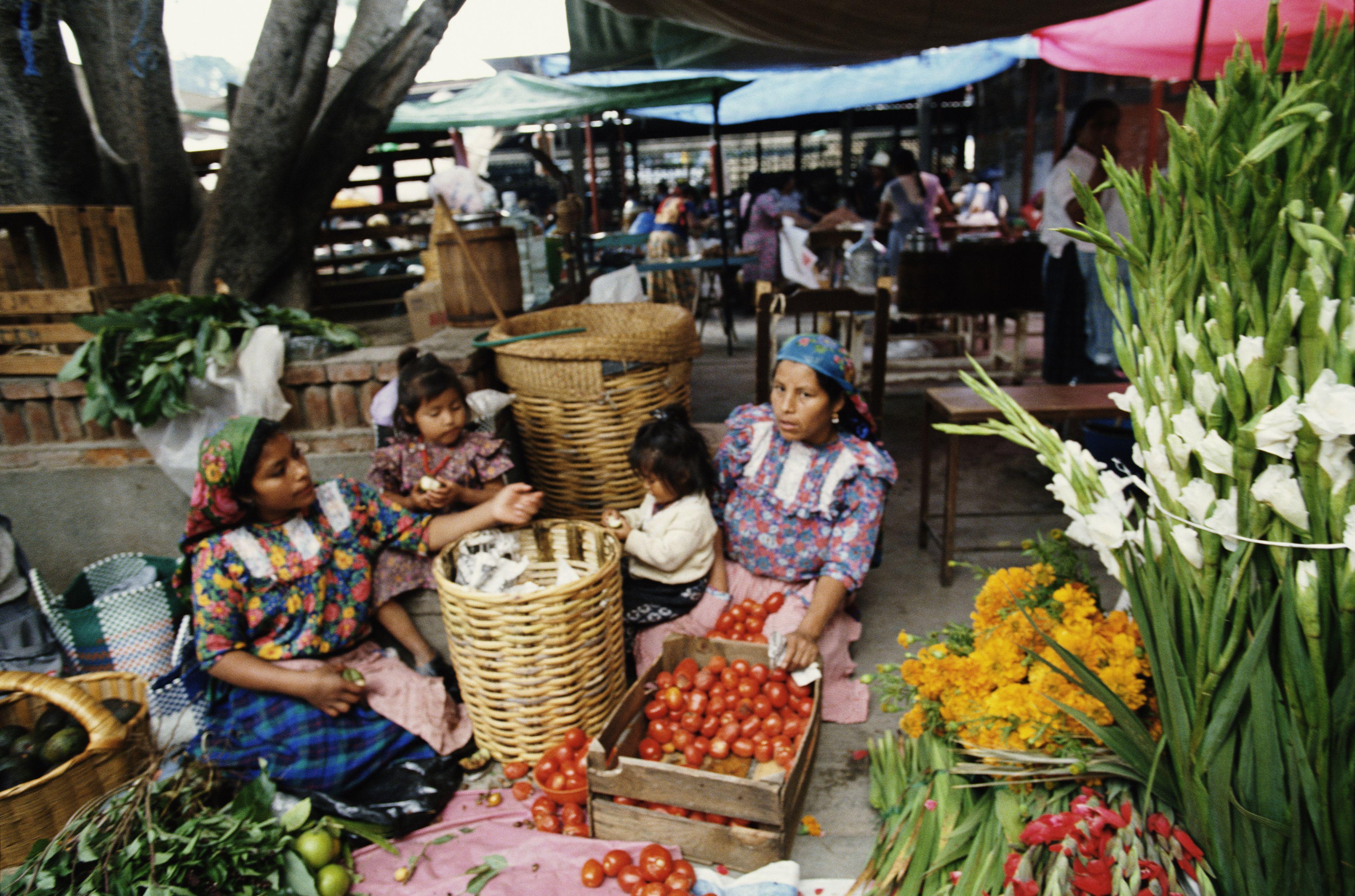 Mexico, Oaxaca, Oaxaca, women with girls (3-7) in produce market