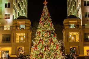 Christmas Tree at Reston Town Center