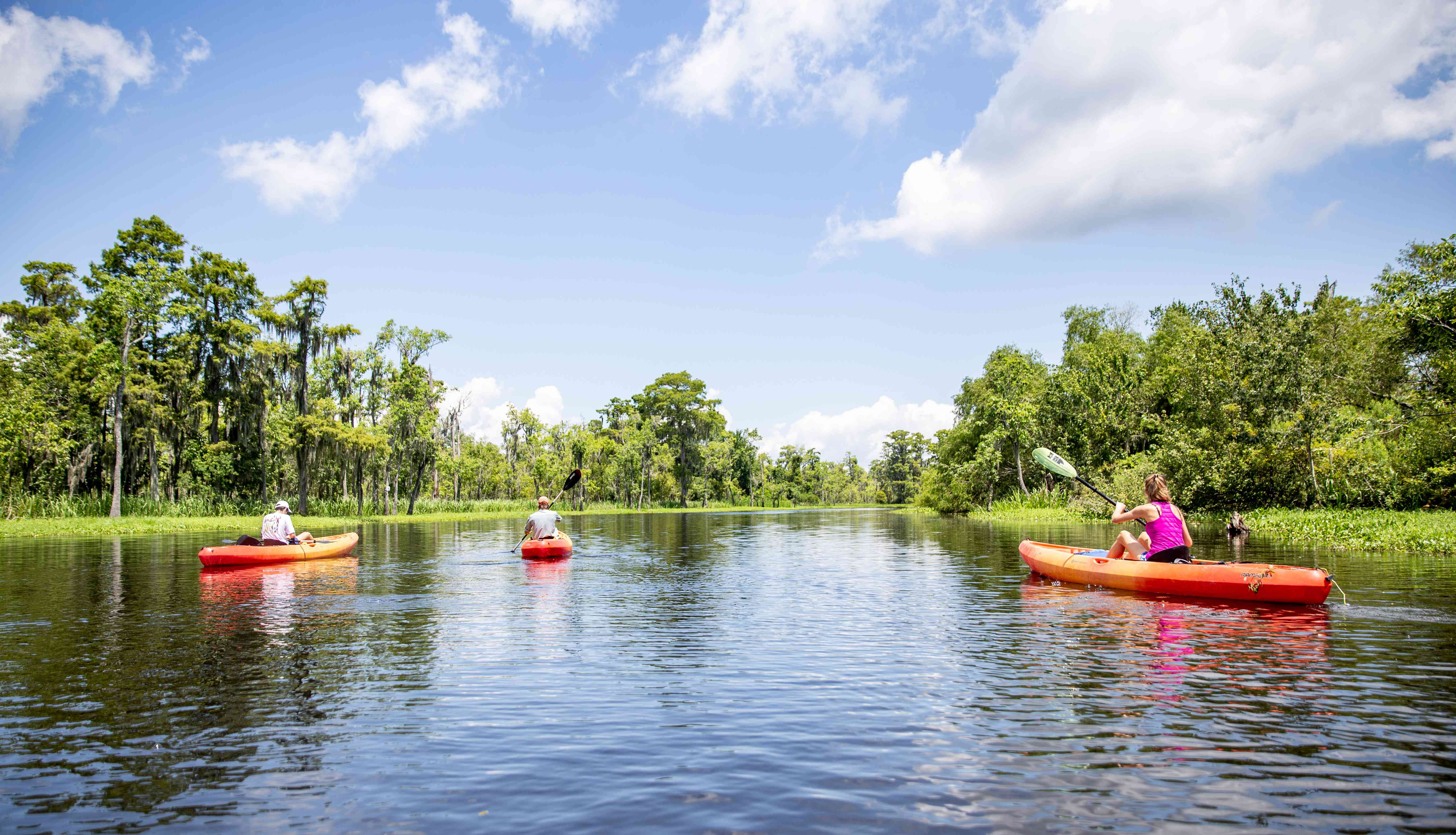 People kayaking the bayou near new orleans