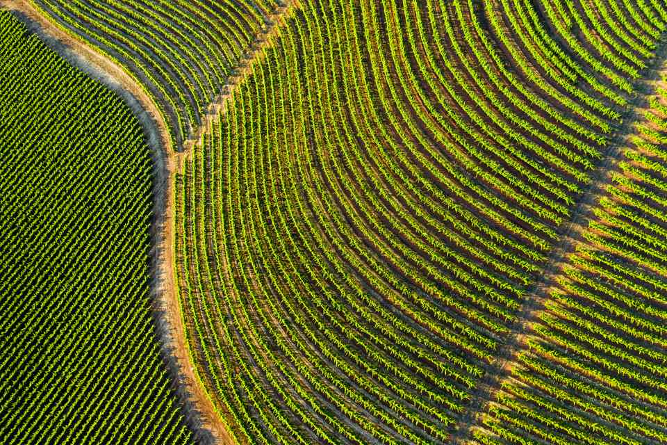 Aerial View of Sonoma Country California