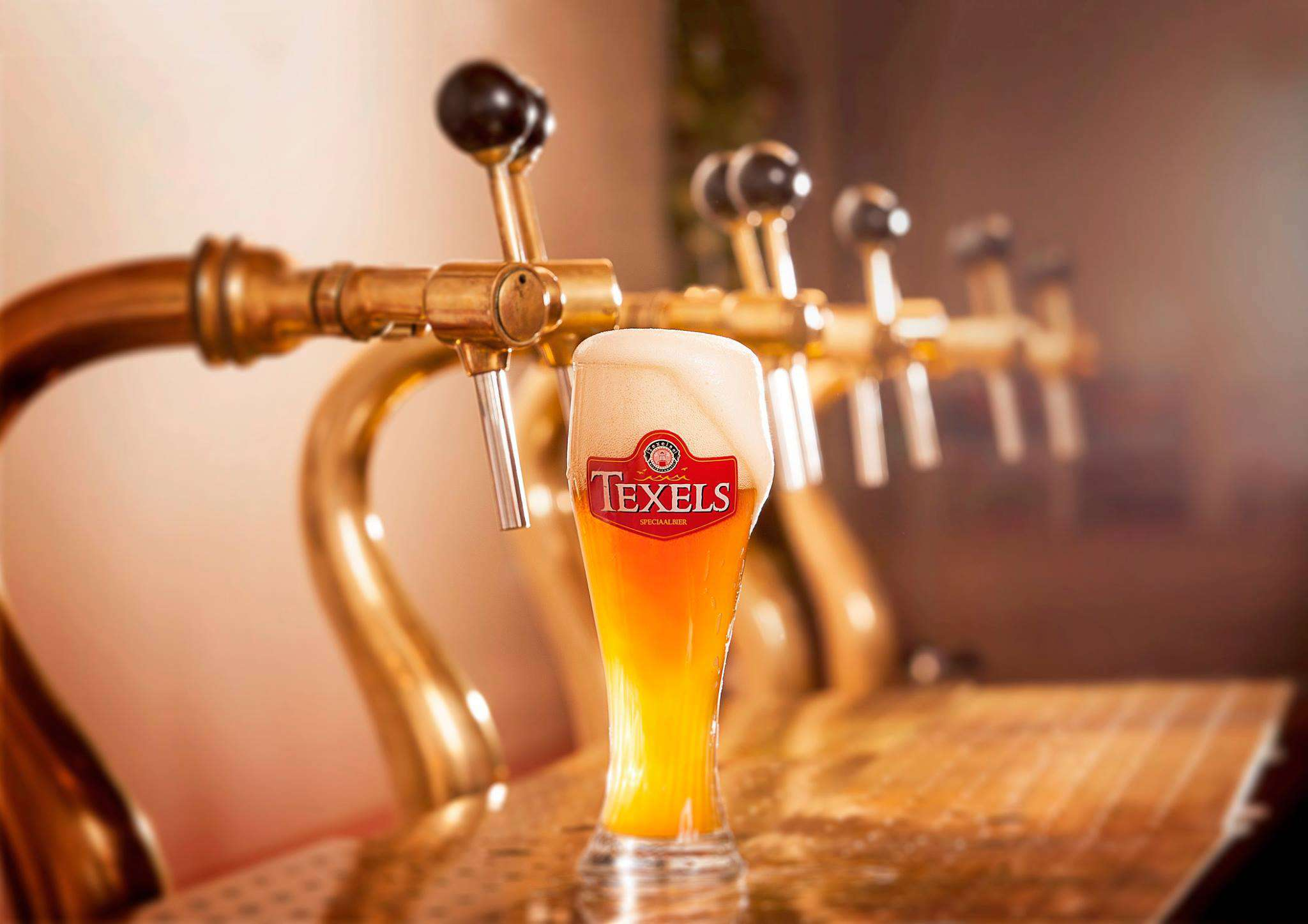 Texels beer glass with a large, foamy head infront of a row of taps