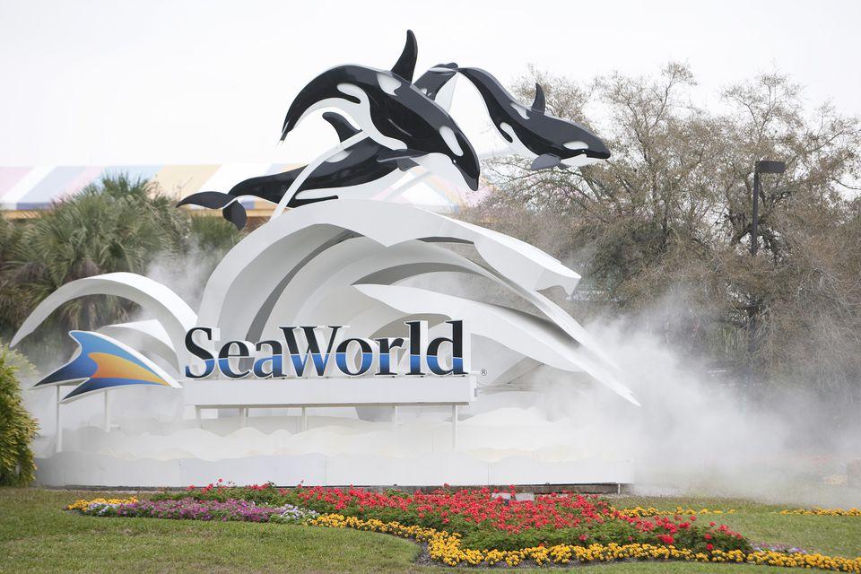 Firmar en la entrada de SeaWorld Orlando