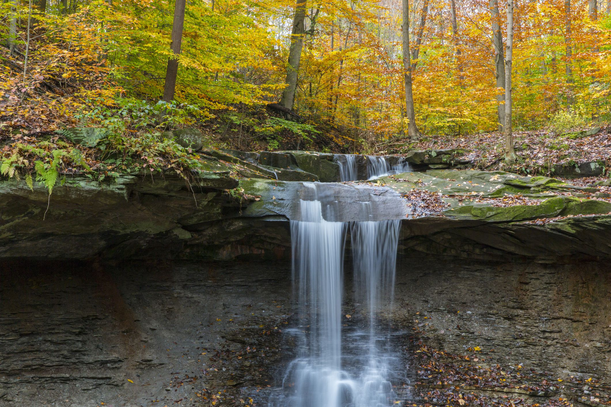 Waterfall in autumn forest, Blue Hens Falls, Cuyahoga National Park, Ohio, USA