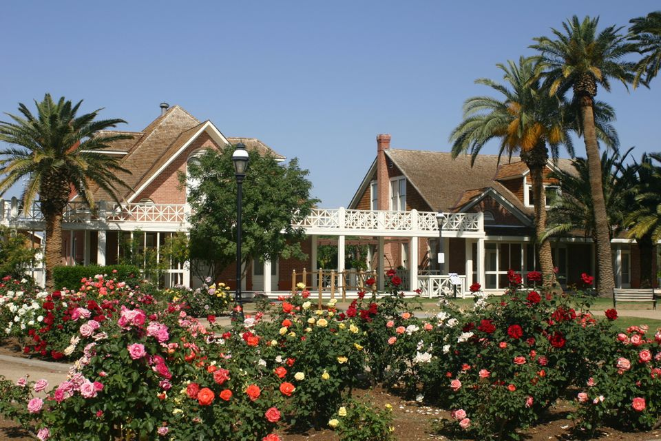 Sahuaro Ranch Rose Garden