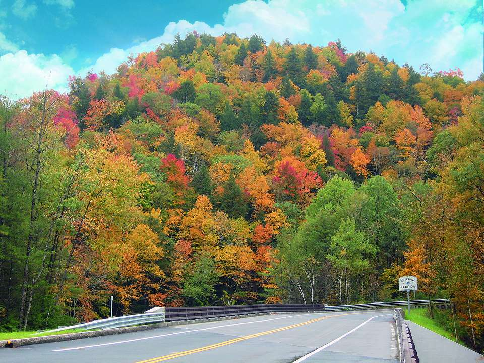 New England Fall Foliage Bus Trips