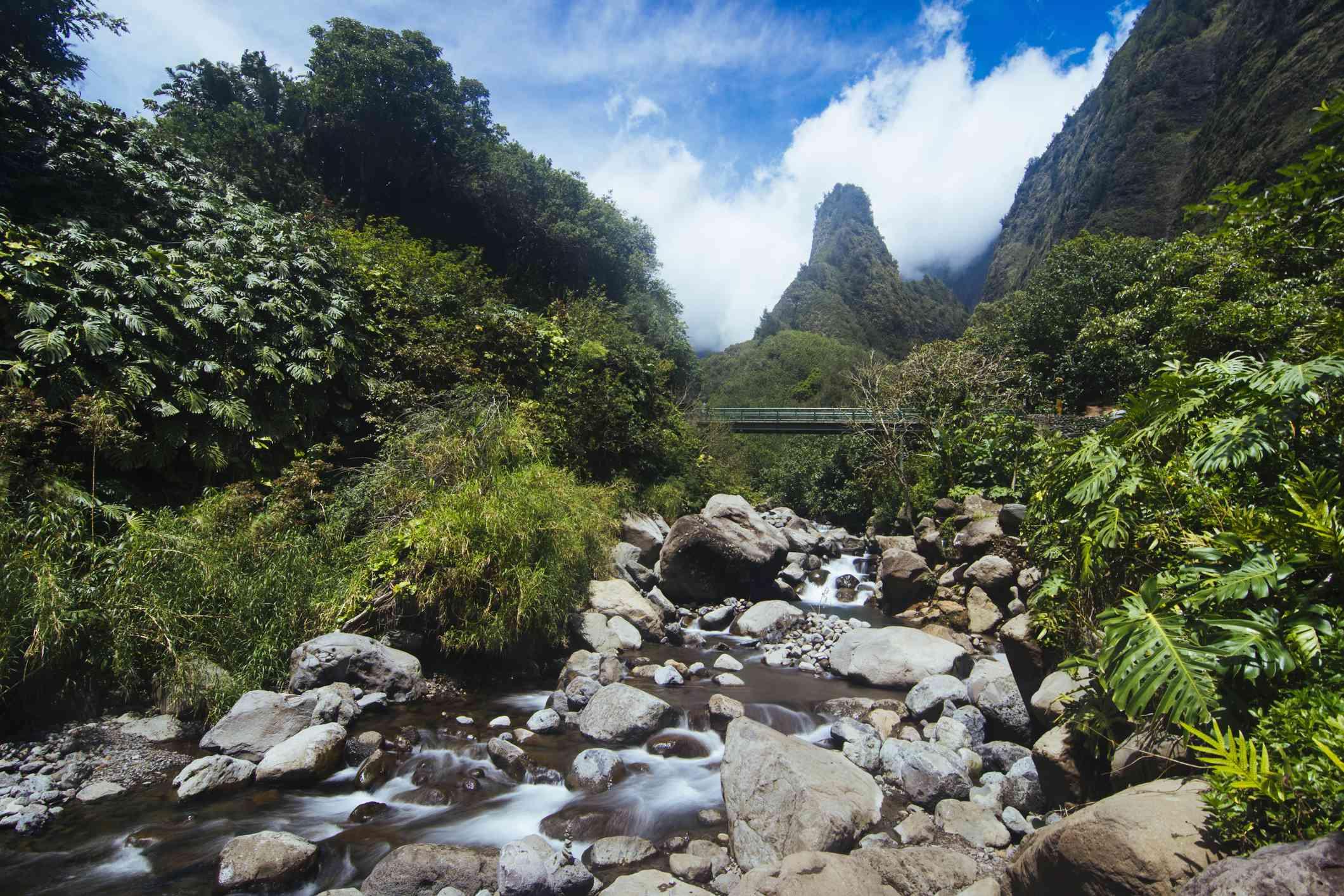 View of Iao Needle Mountain inside the Iao Valley
