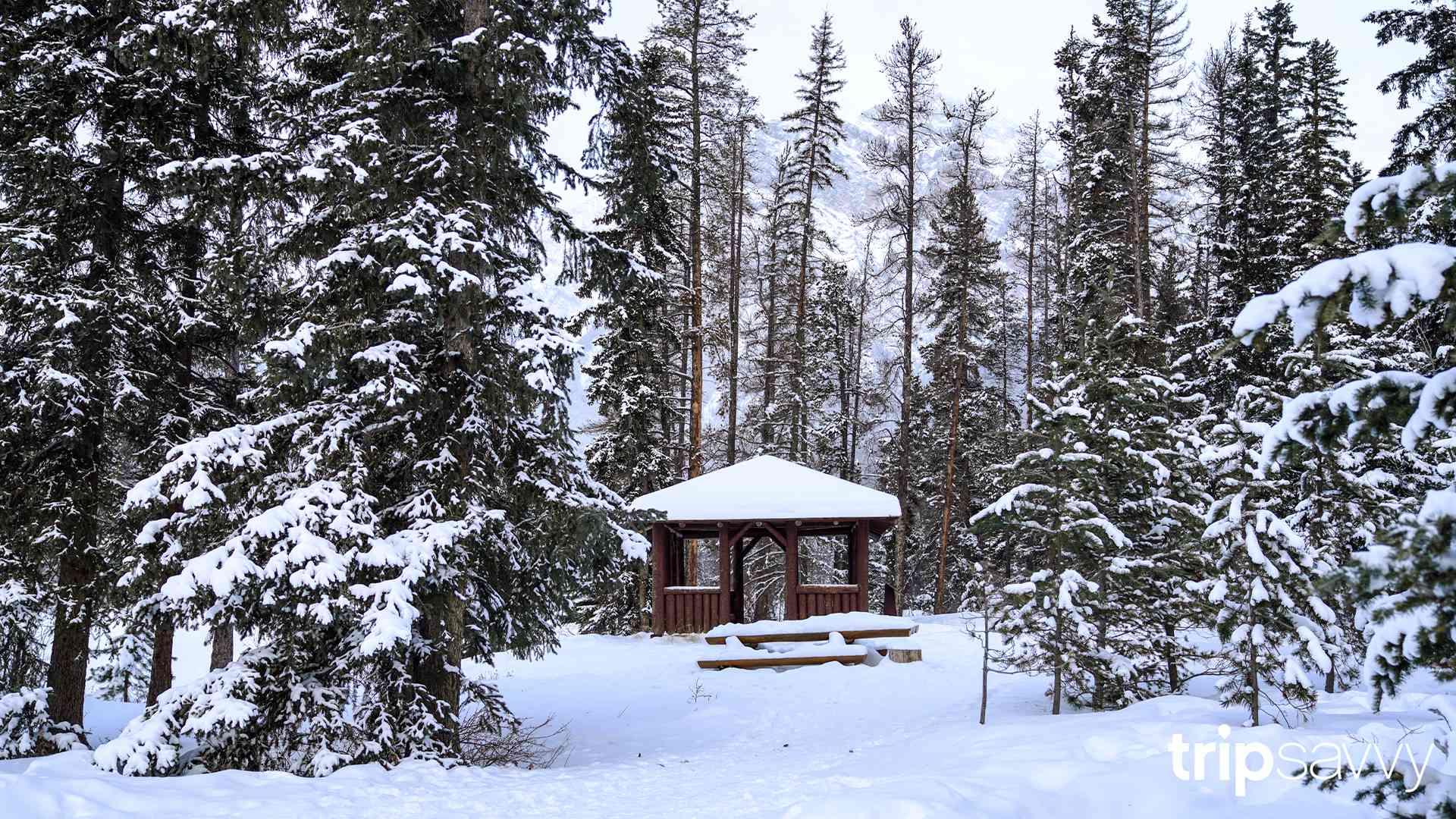 A snowy gazebo in Jasper, Canada