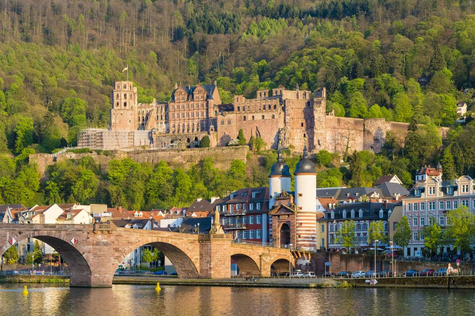 Heidelberg Castle and buildings in Altstadt (old town), Heidelberg, Baden-Wurttemberg, Germany