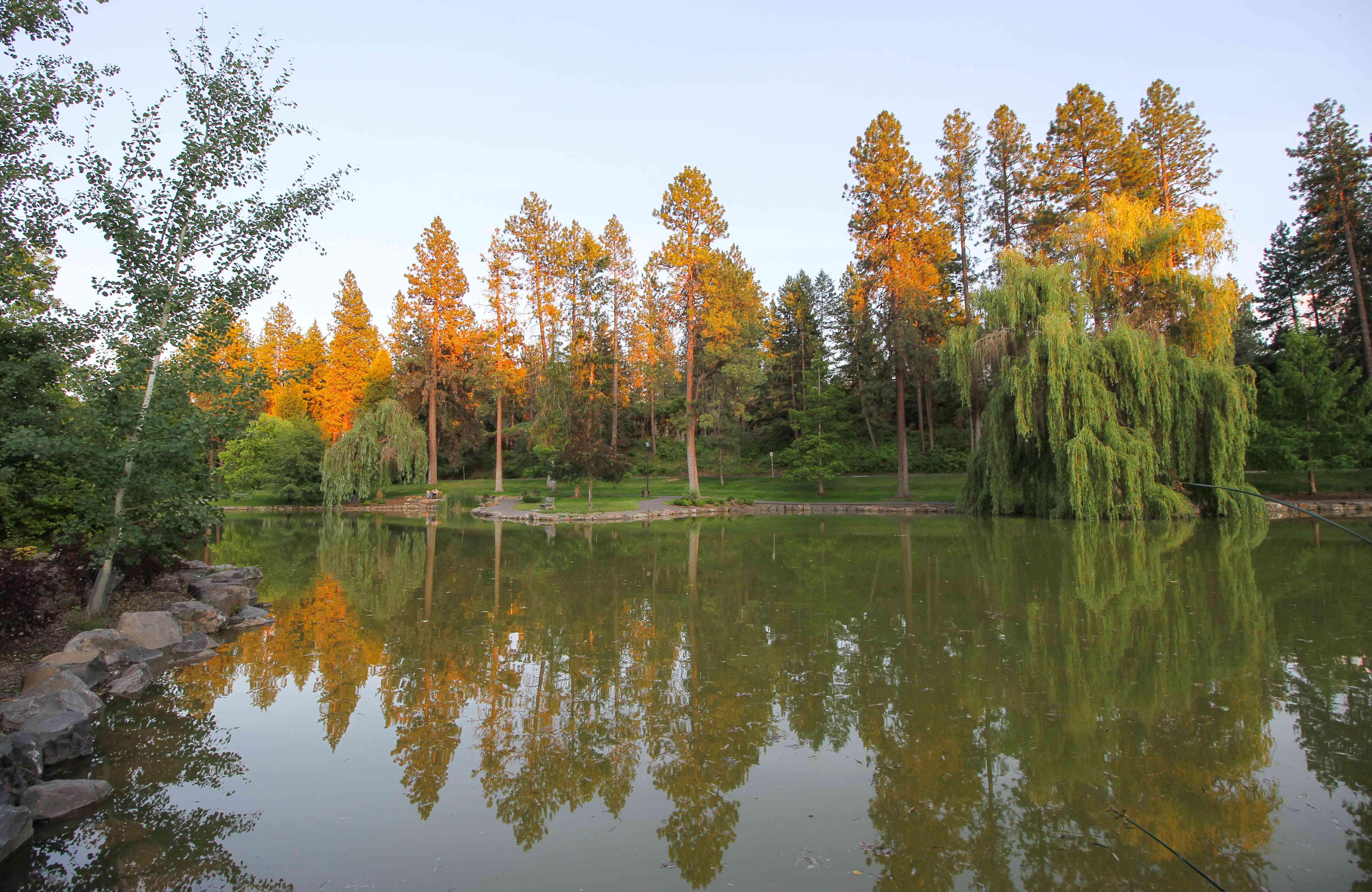 Árboles con hojas de varios colores en el Parque Manito