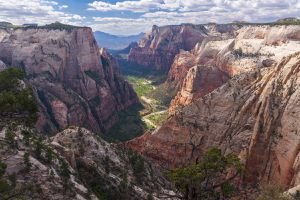 The red sandstone walls of Zion Canyon stretch into the distance
