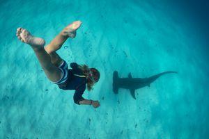 Boy free diving with hammerhead shark, Bimini, Bahamas