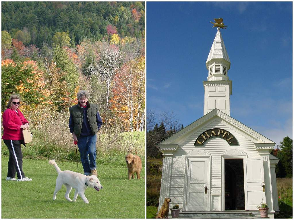 dogs and their owners outside in the fall and a dog in front of a small white chapel