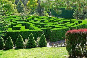Hedge Maze at the VanDusen Botanical Garden, Vacouver
