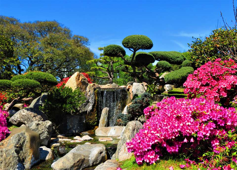 Landscape of waterfall, flowering trees and bonsai.