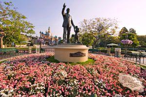 Spring Flowers at Disneyland