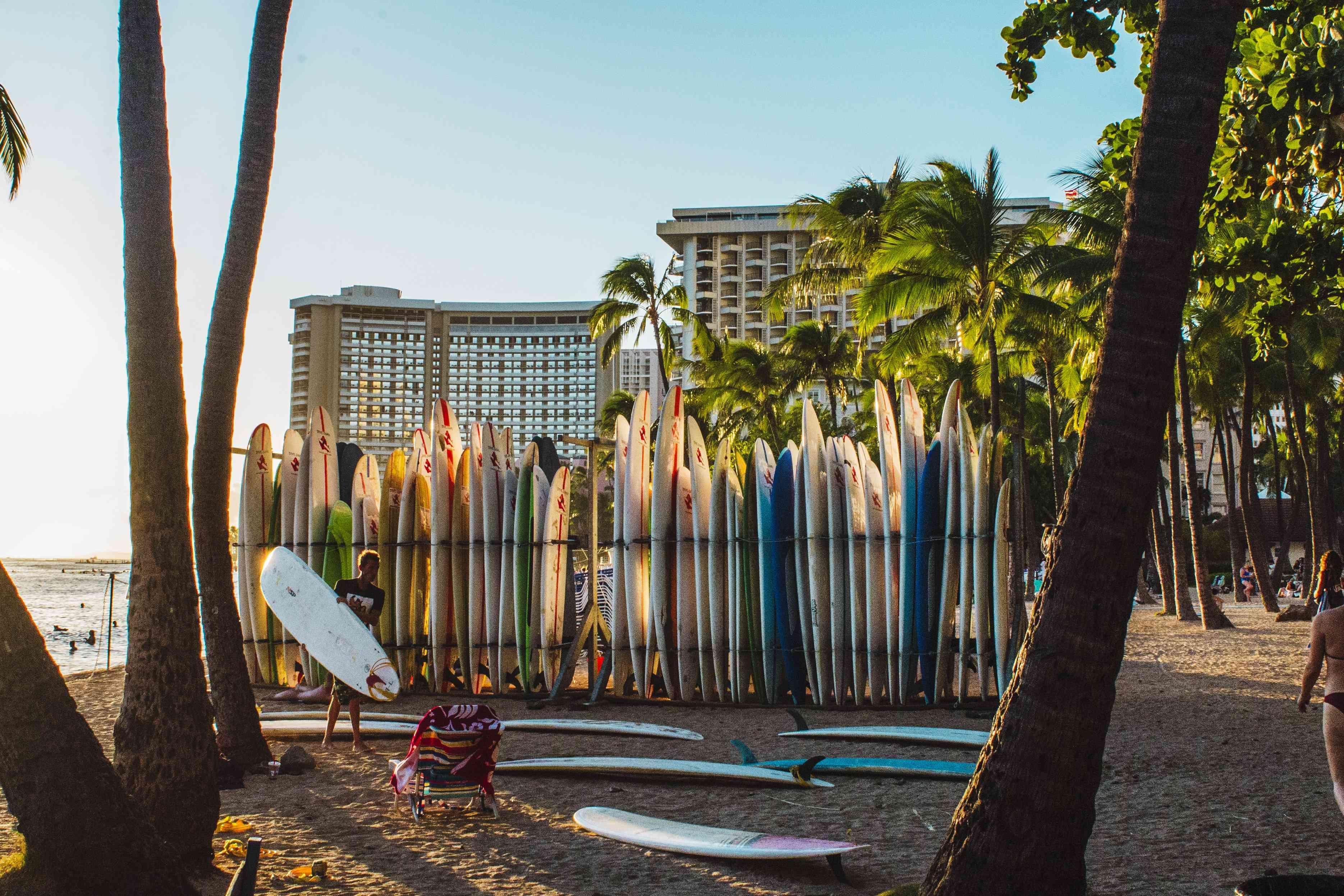 A line of surfboards in Waikiki