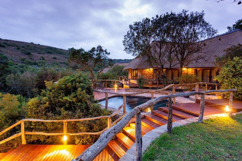 staircase, pool and lodge at Marks Camp, overlooking Lalibela Game Reserve
