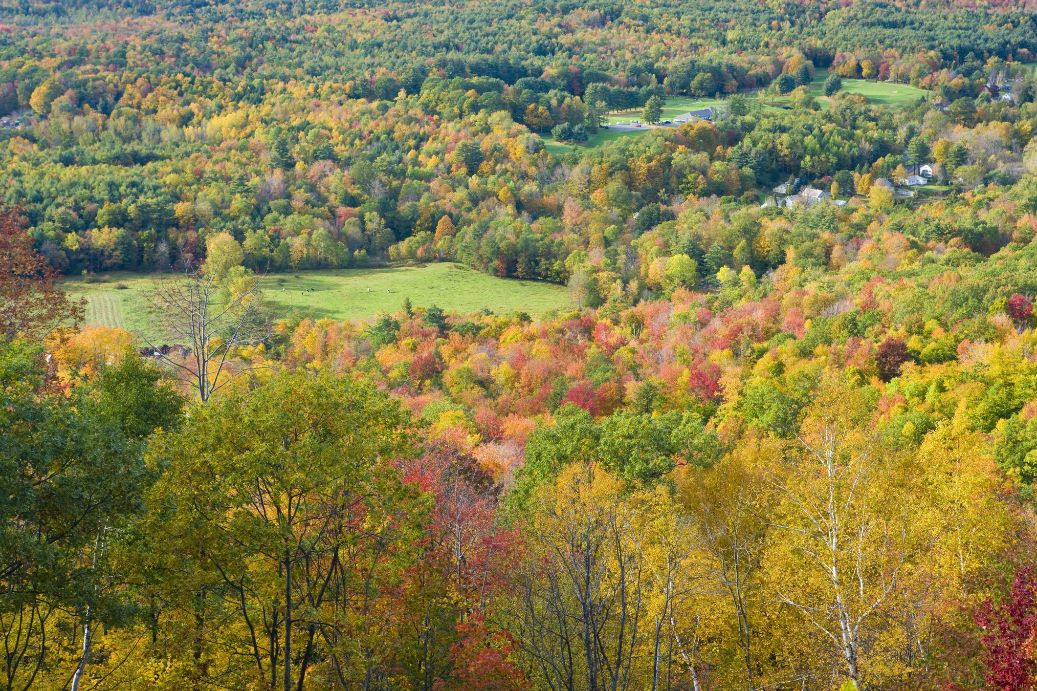 Fall in New England as seen from Mohawk Trail, Florida, Massachusetts