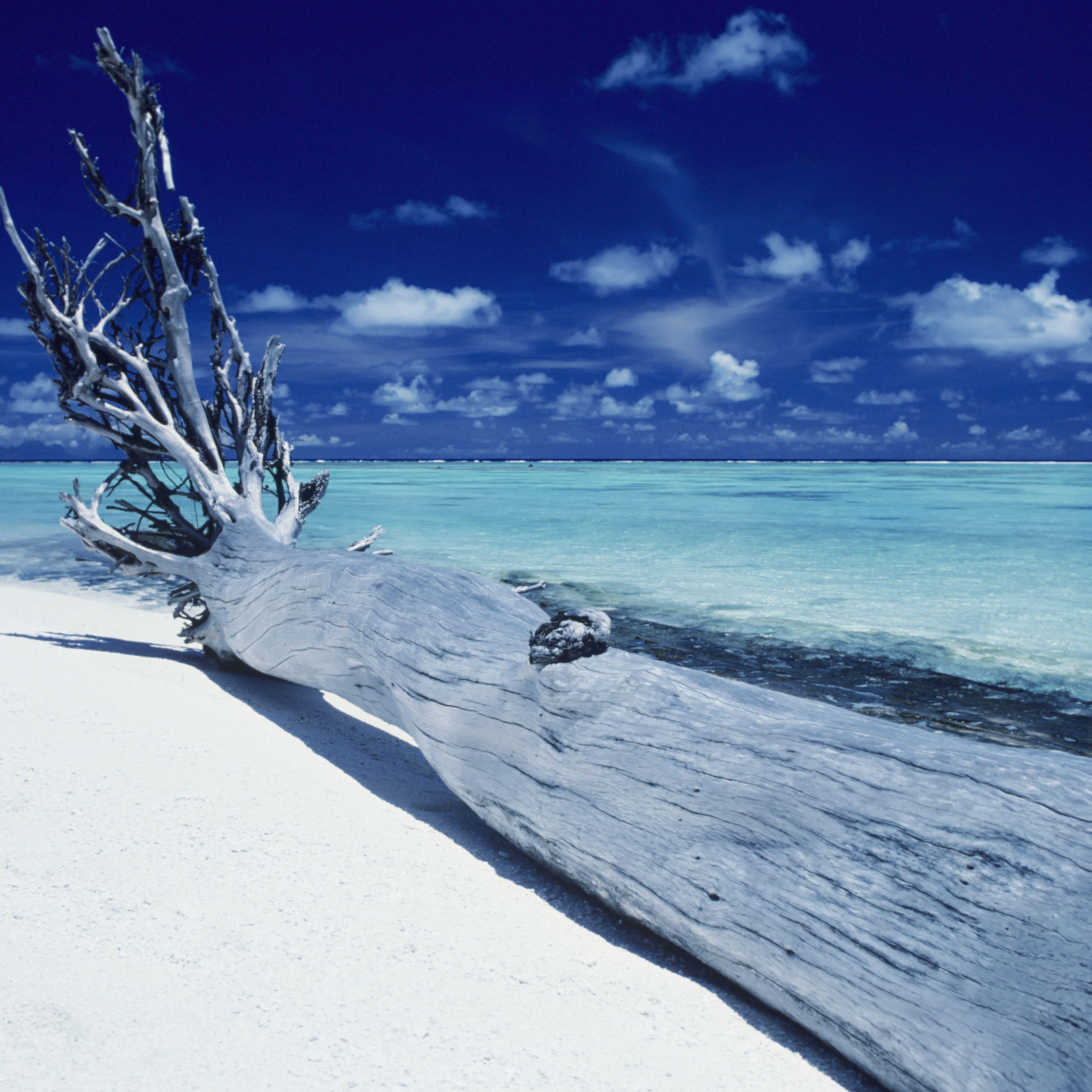 Marlon Brando S Private Island In Tahiti Called Tetiaroa