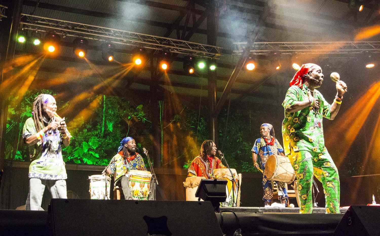 Rainforest Music Festival