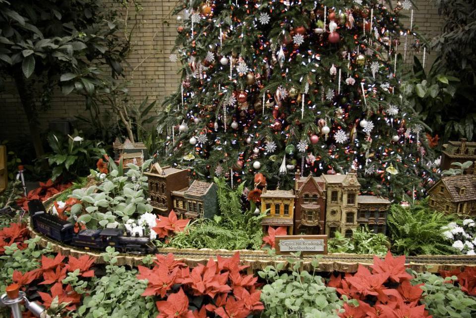 rachel cooper - Botanical Garden Washington Dc