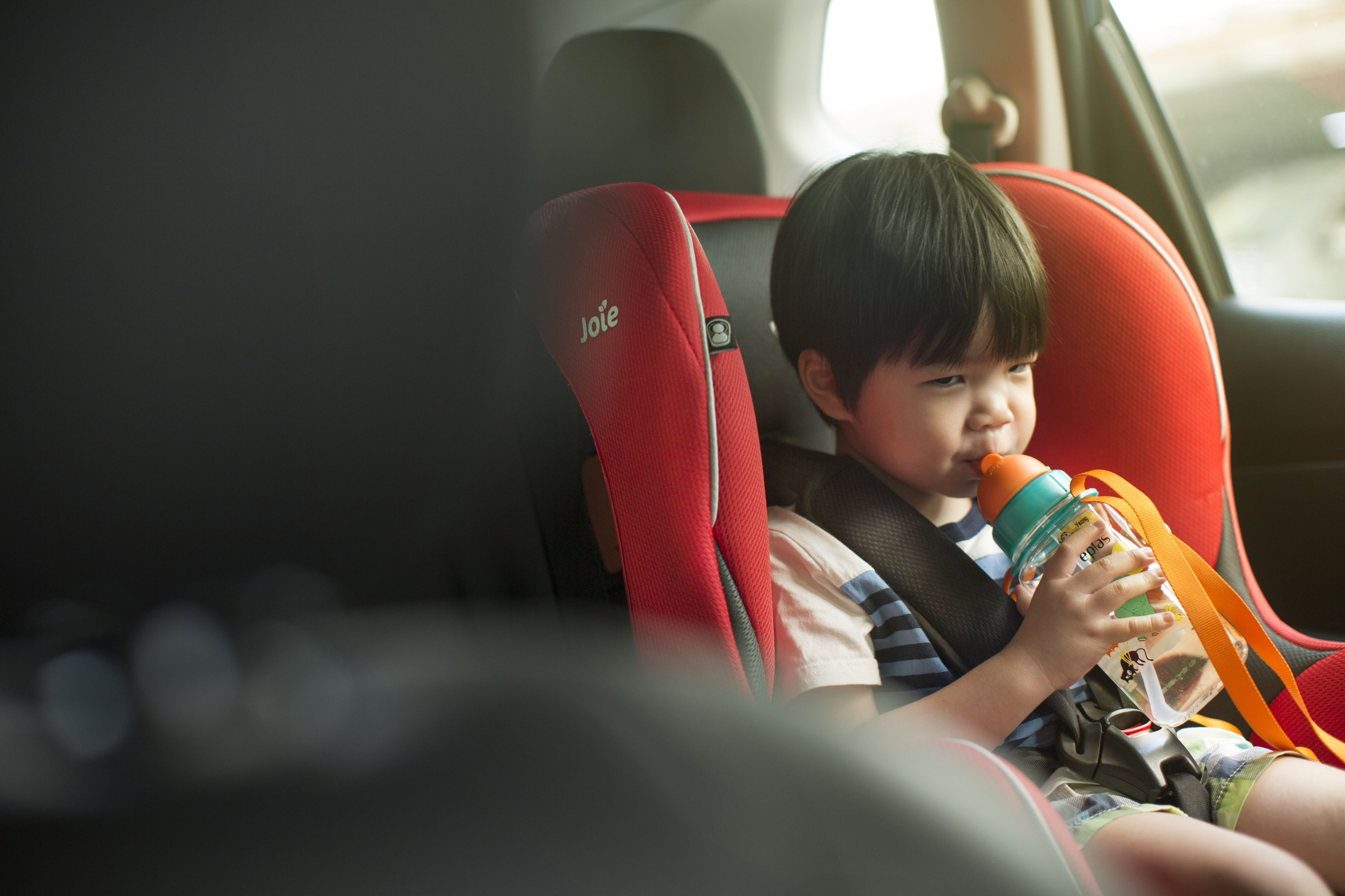 Georgia S Child Car Safety Laws