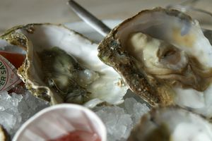The Whitstable native oyster