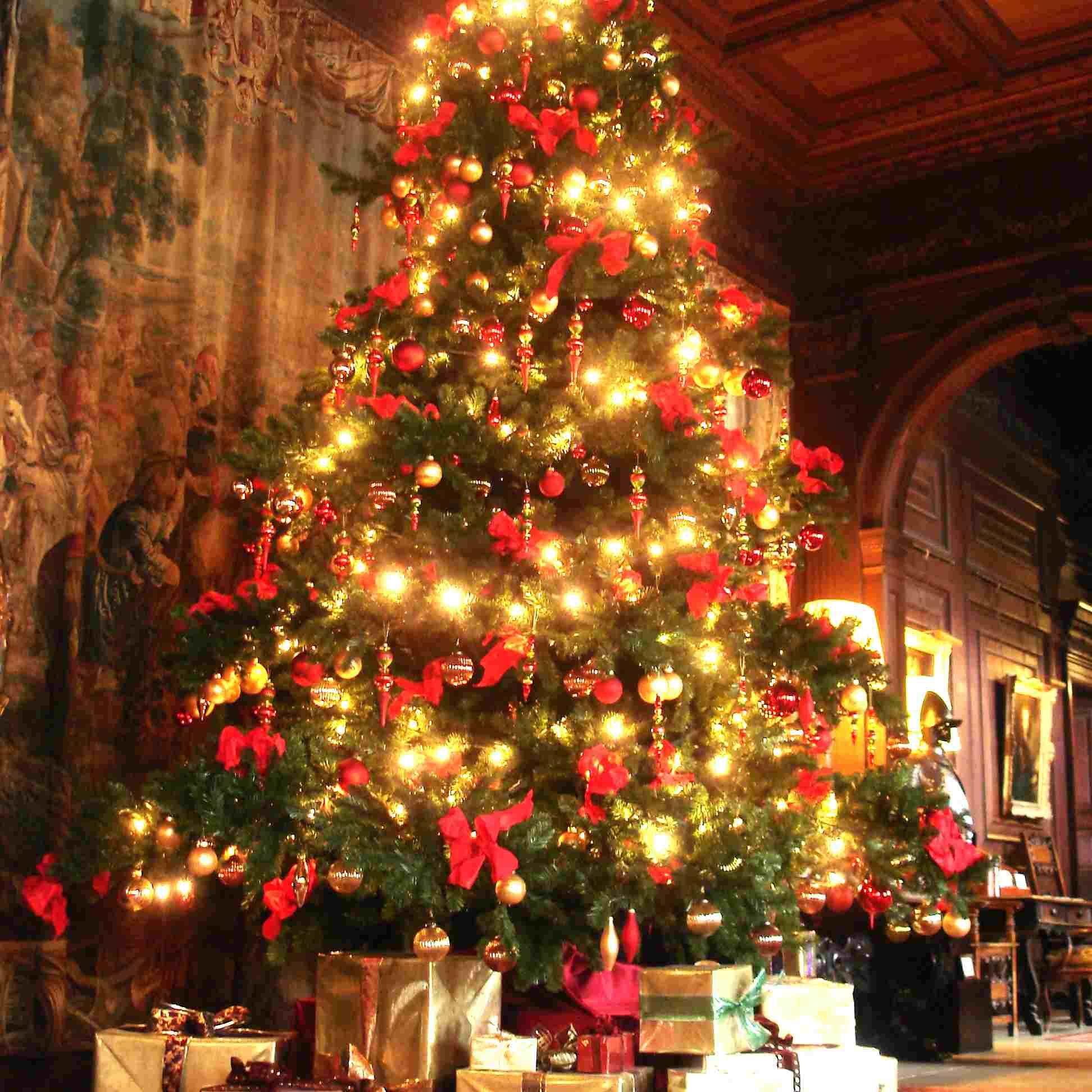 картинка рождественская елка в англии ниши стене