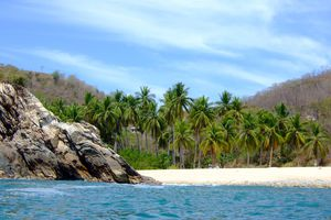 Rocks, sand, and palm trees adorn a Mexican beach