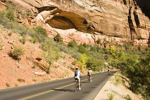 biking in Zion