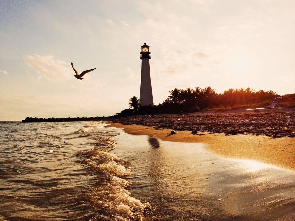 Seagull and lighthouse during sunset at Bill Baggs Cape Florida State Park, USA