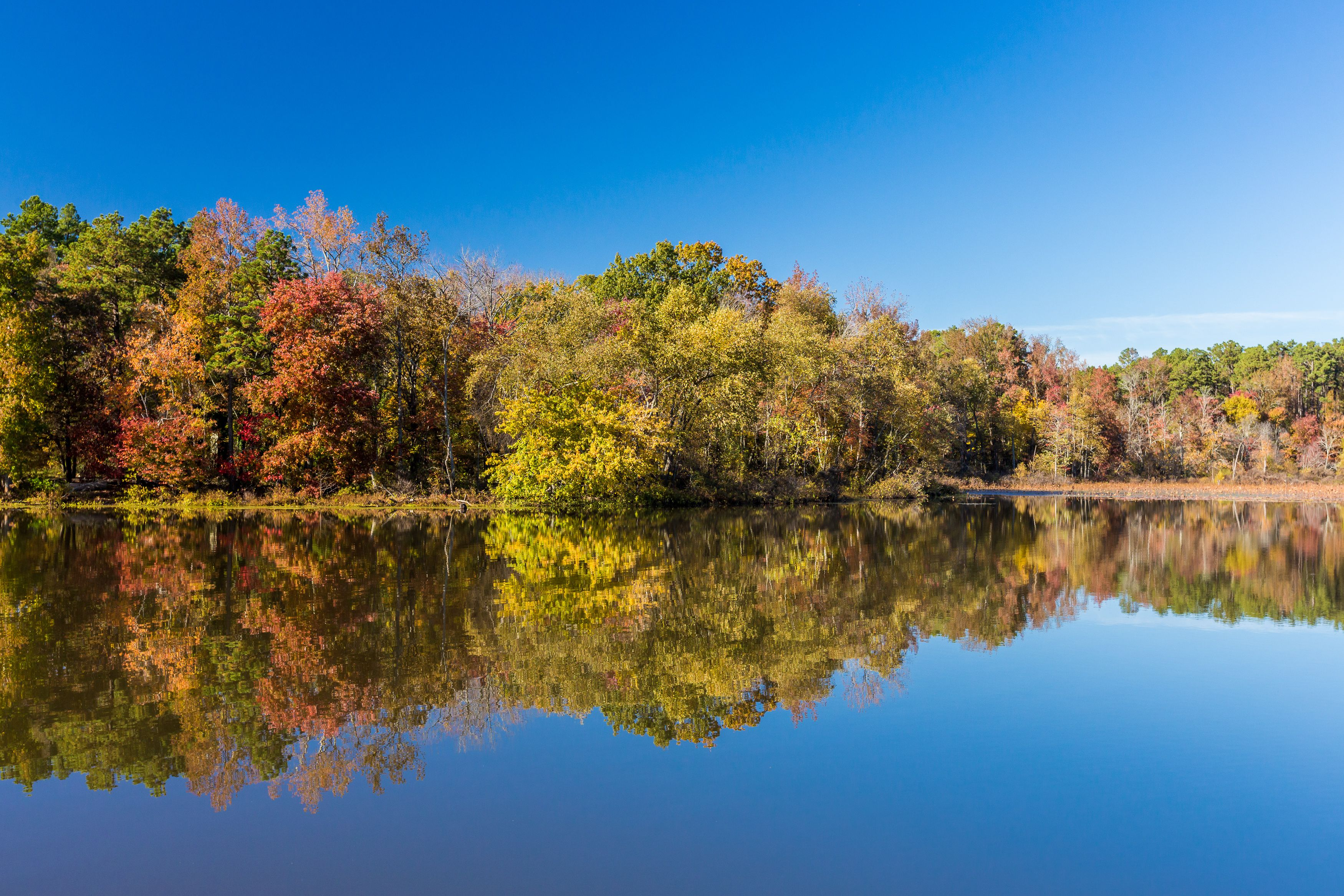 Arkansas Fall Colors 2020.Best Places To See Fall Foliage In Arkansas