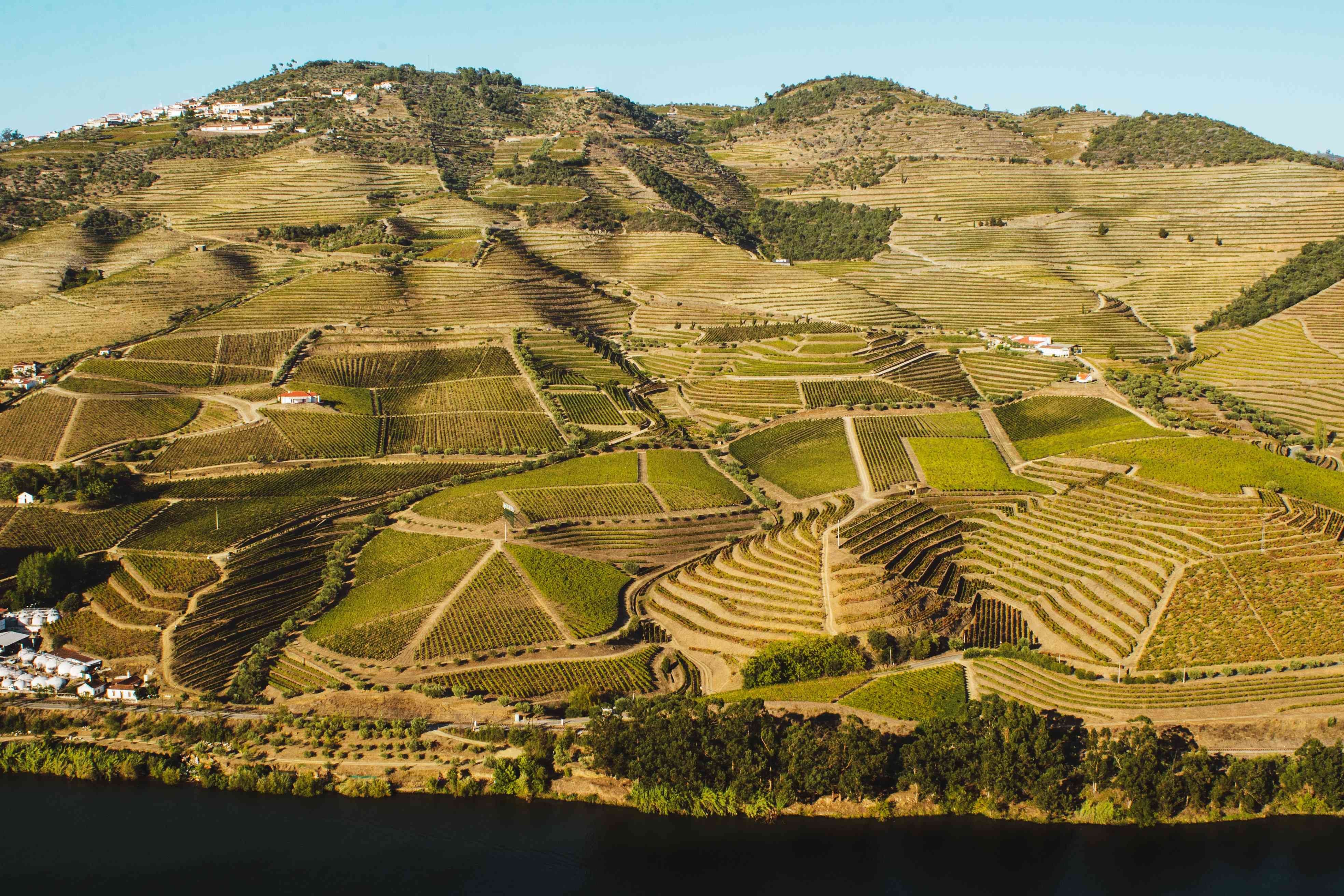 View of the rolling hills and vineyards in Douro Valley