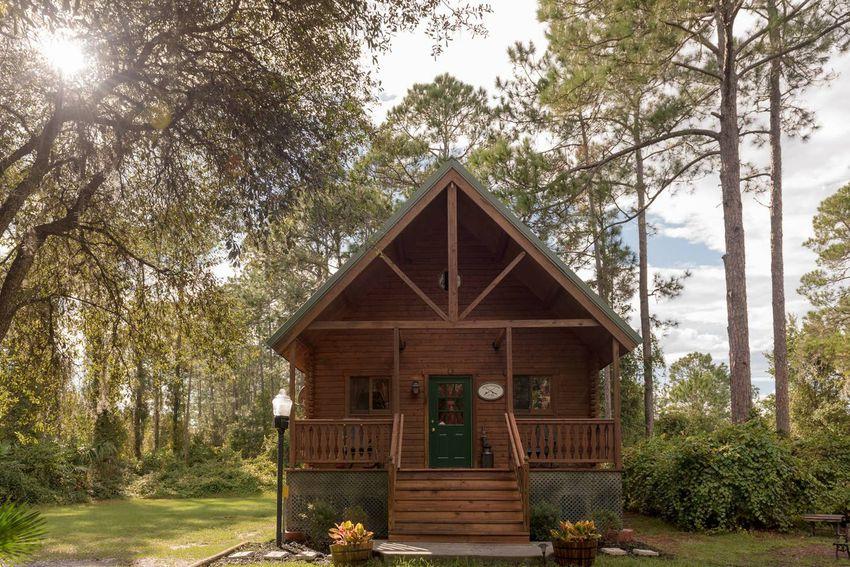 Cabin in the Woods Near Pierson