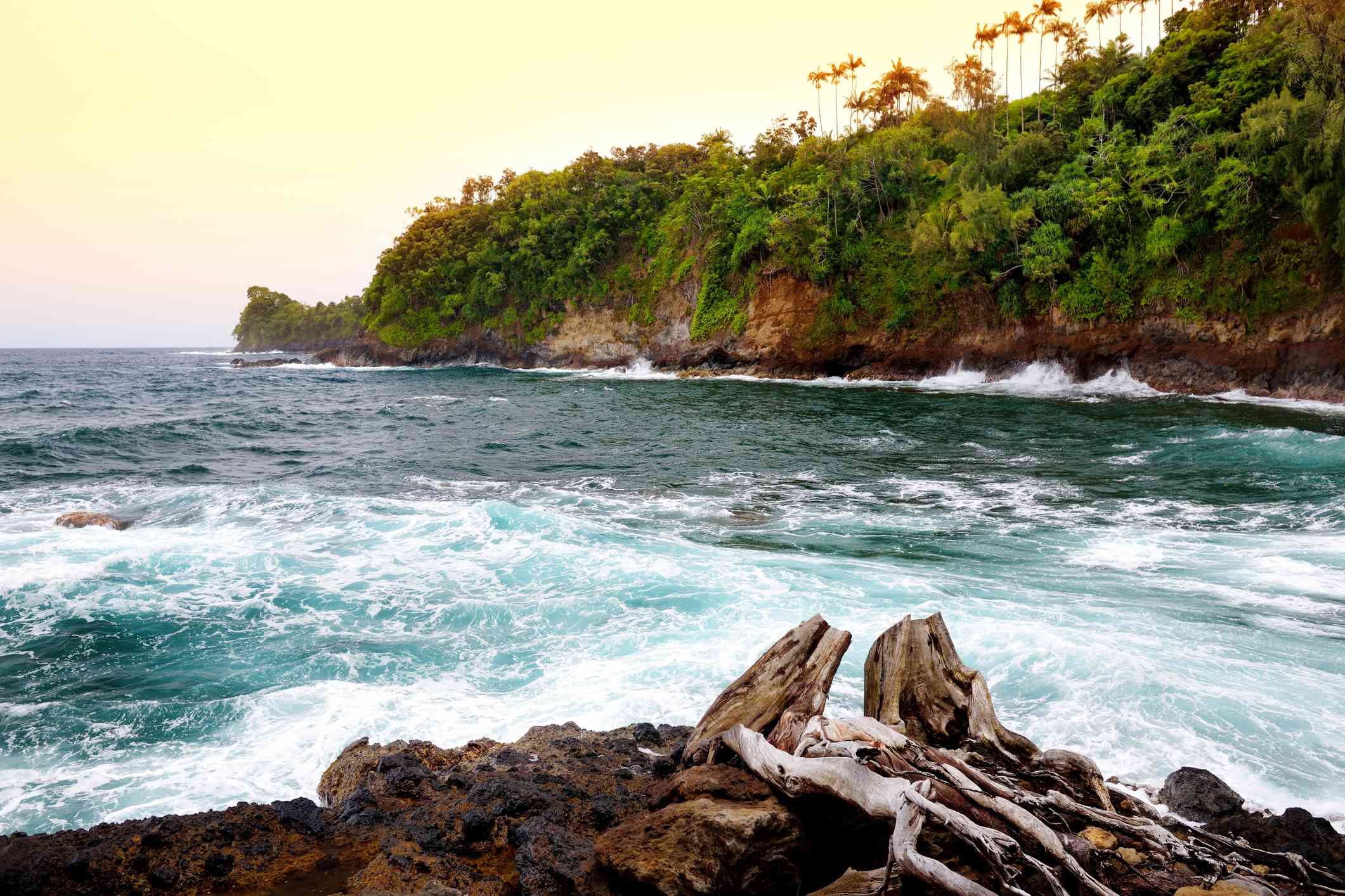 View from Onomea Bay Trail on Hawaii Island