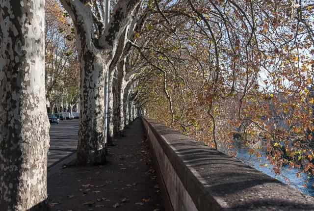 Walking to Testaccio by Following the Tiber
