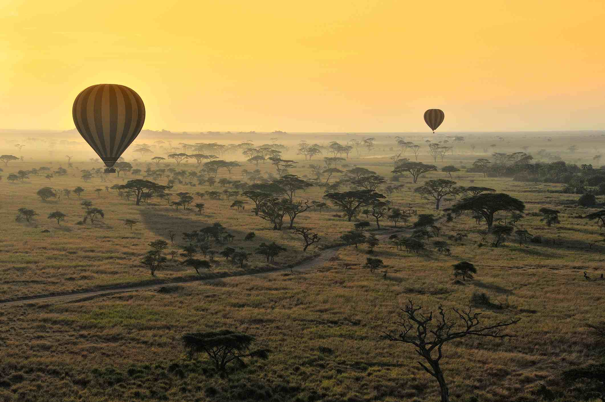 The Top Five Tanzania Safari Itineraries for 2017