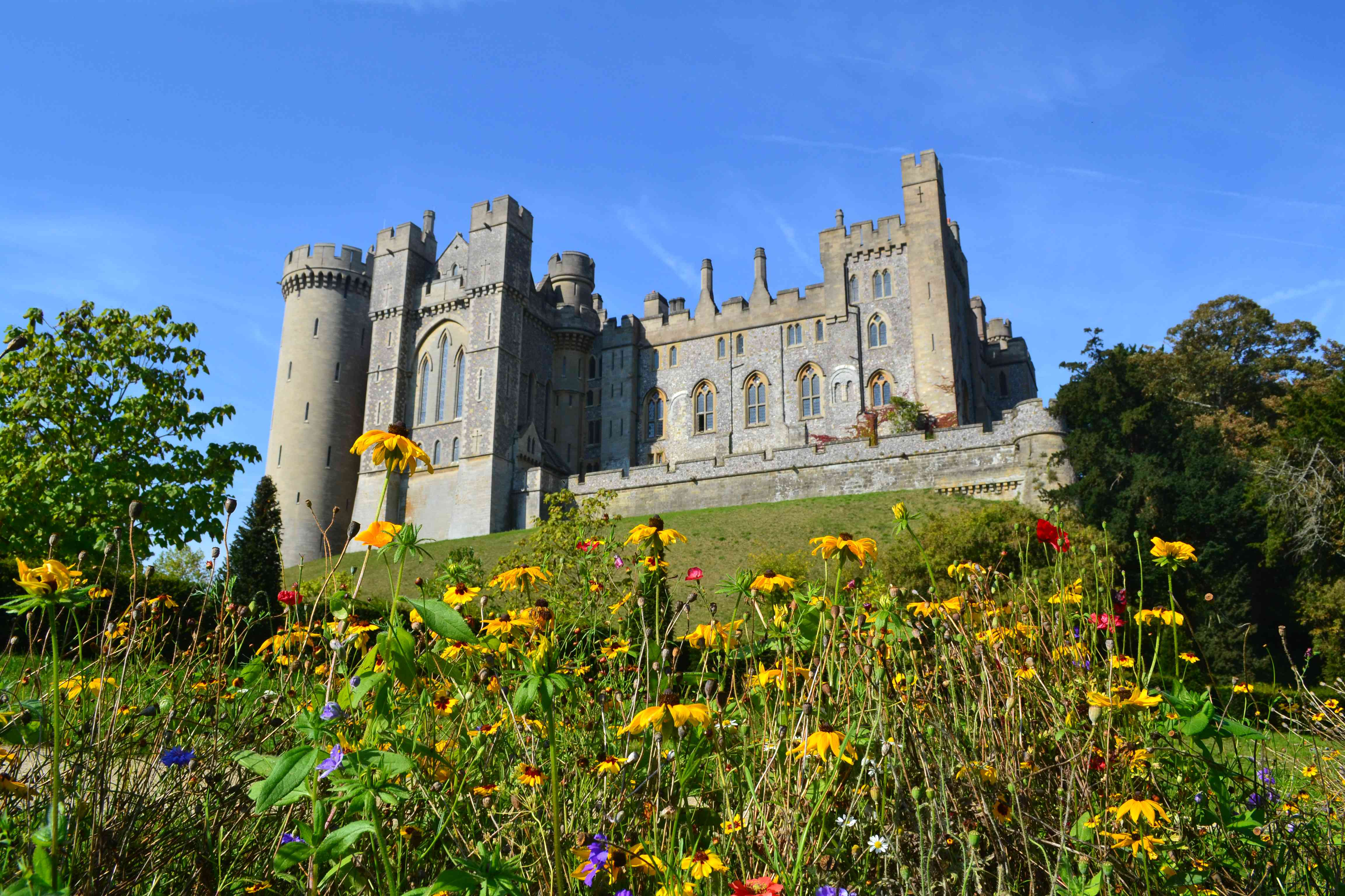 Arundel Castle Spring with flowers