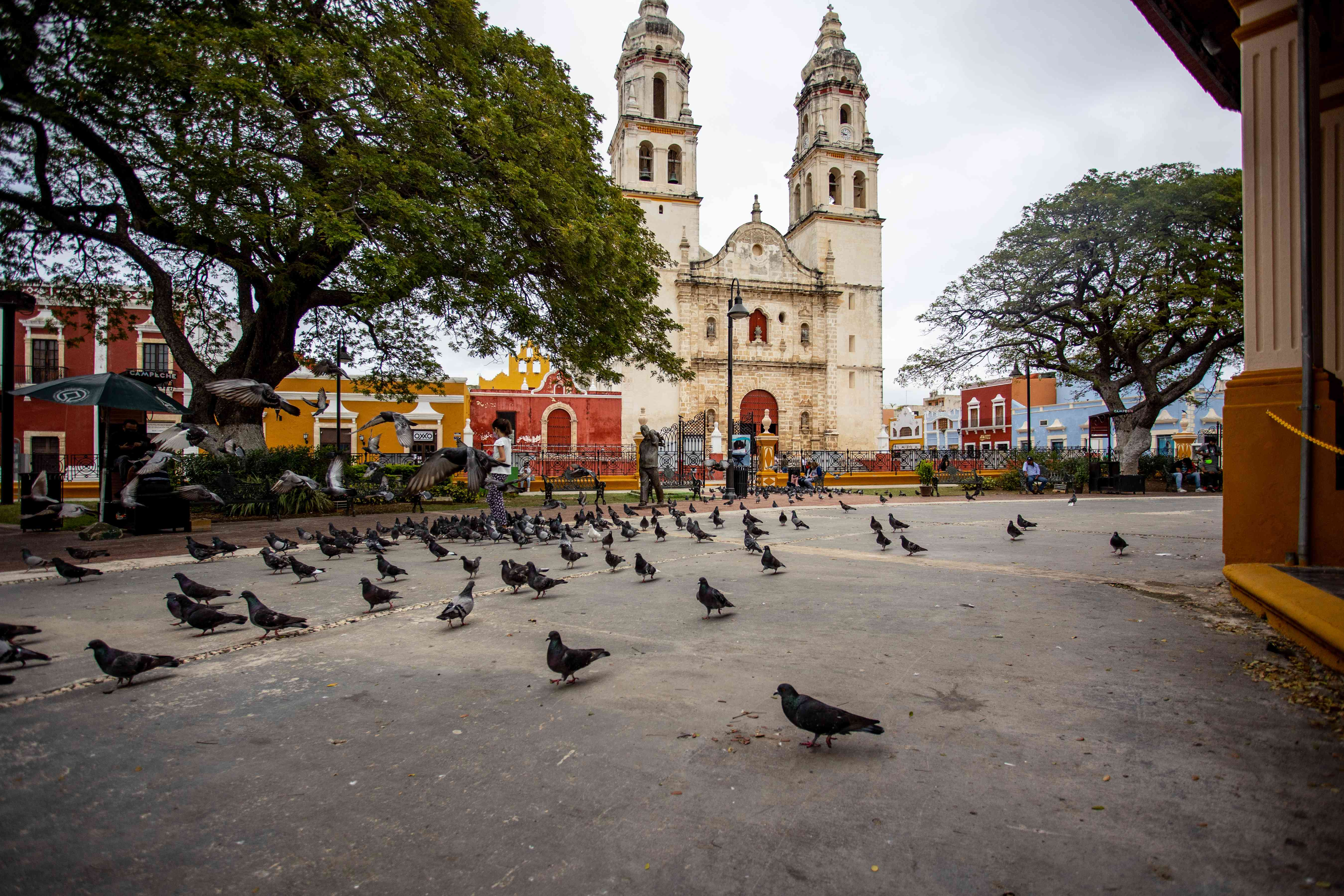 A public square in front of a church covered in pigeons