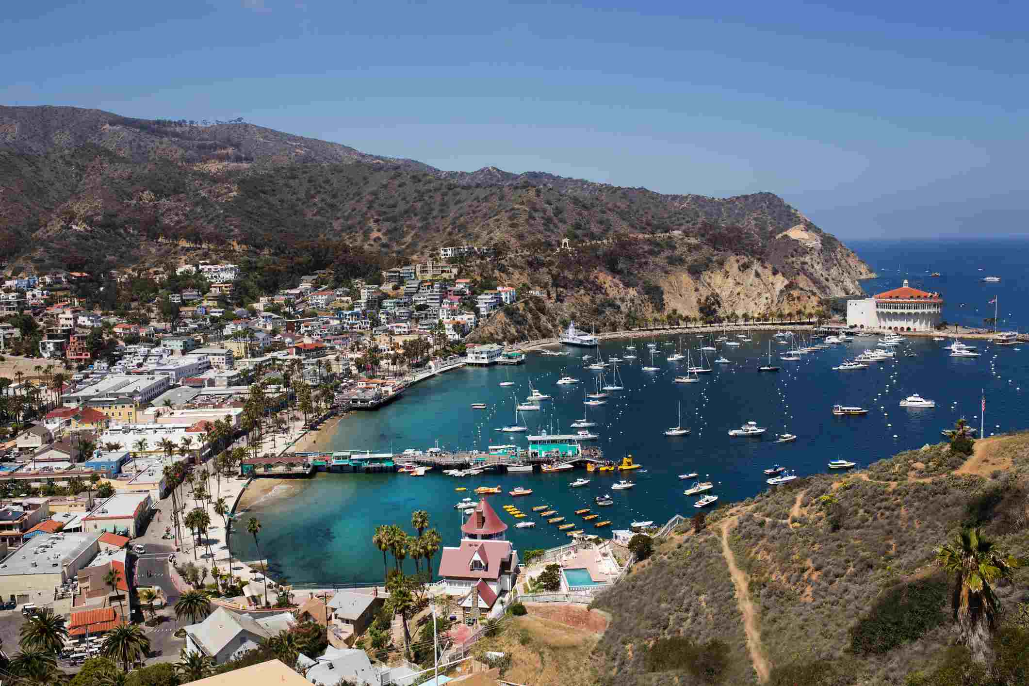 Catalina Island Hiking - Day Hikes You Will Love