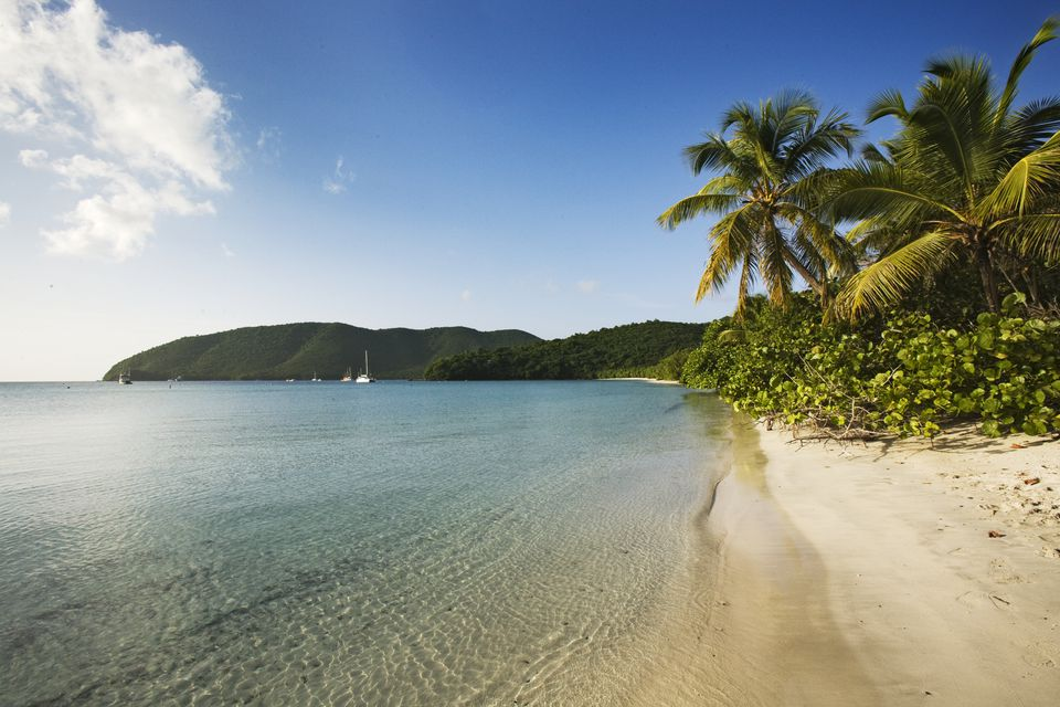 Top Six Beaches On St John U S Virgin Islands